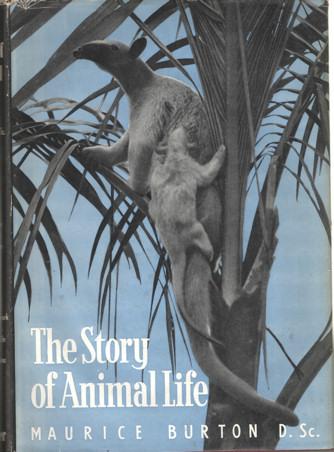 BURTON, MAURICE - The Story of Animal life. Vol I and II.