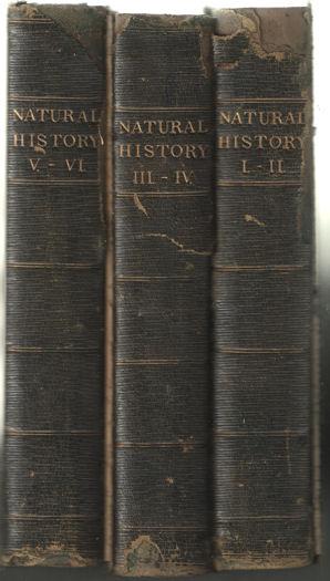DUNCAN, P. MARTIN - Natural History.